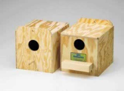 Regular Parakeet Nest Box