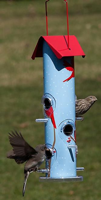 Perky-Pet Cardinal Metal Tube Feeder