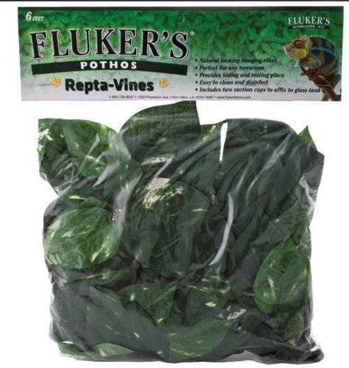 Fluker's Repta-Vines Pothos Green 6ft