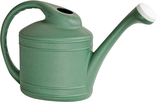 Southern Patio WC8108FE Watering Can, 2 Gallon