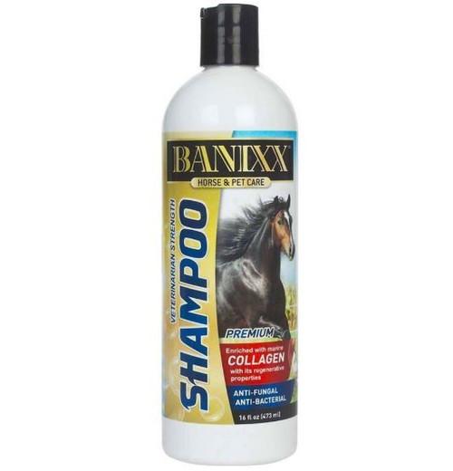 Banixx Shampoo With Collagen, 16oz