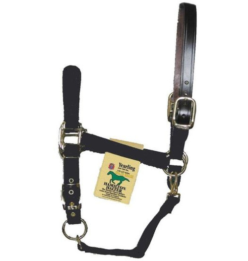 Hamilton Halter Adjustable Horse Halter With Leather Headpole, Black