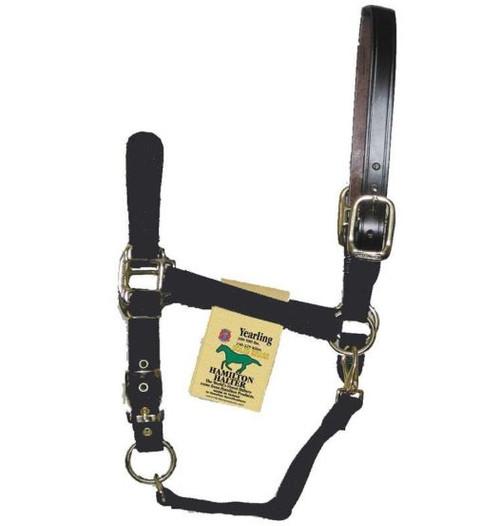 Hamilton Halter Adjustable Horse Halter With Leather Headpole, Black