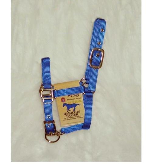 Hamilton Halter Adjustable Miniature Horse Halter, Blue