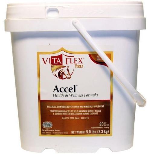 Vita Flex Accel Health And Wellness Pro