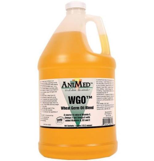 Animed WGO Wheat Germ Oil Blend Supplement, 1 Gallon