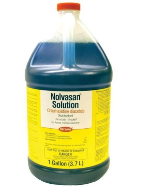 Nolvasan Solution Chlorhexidine Diacetate Disinfectant, 1 Gallon