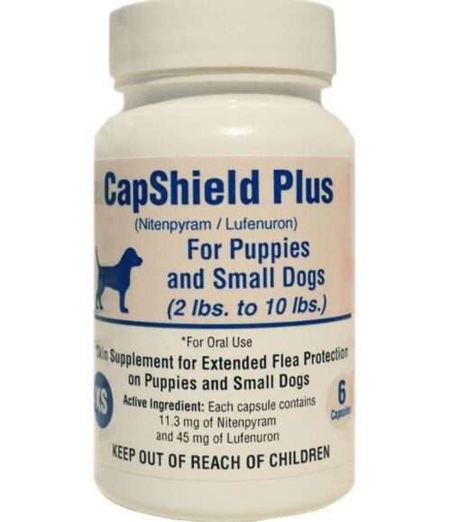 Pets Pharmacy Capshield Plus Skin Supplement, 6 Count