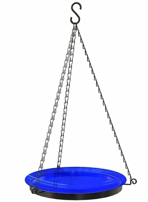 """Panacea Products Glass Bird Bath W/Chains, 10"""", Assorted"""