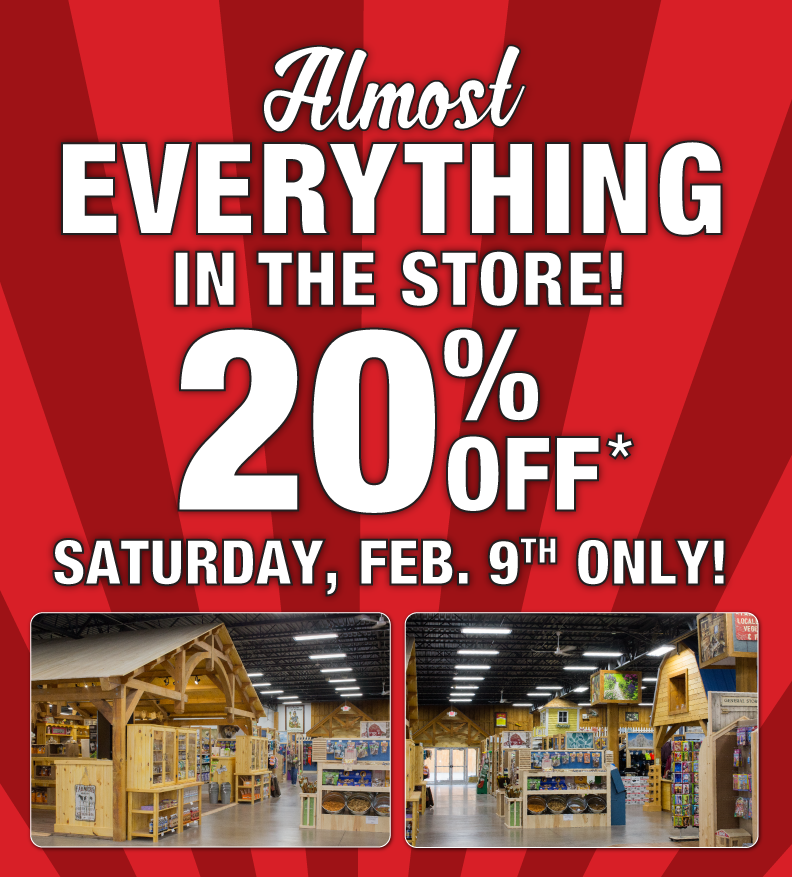 20-off-sale-feb-9-2019-landing-page.png