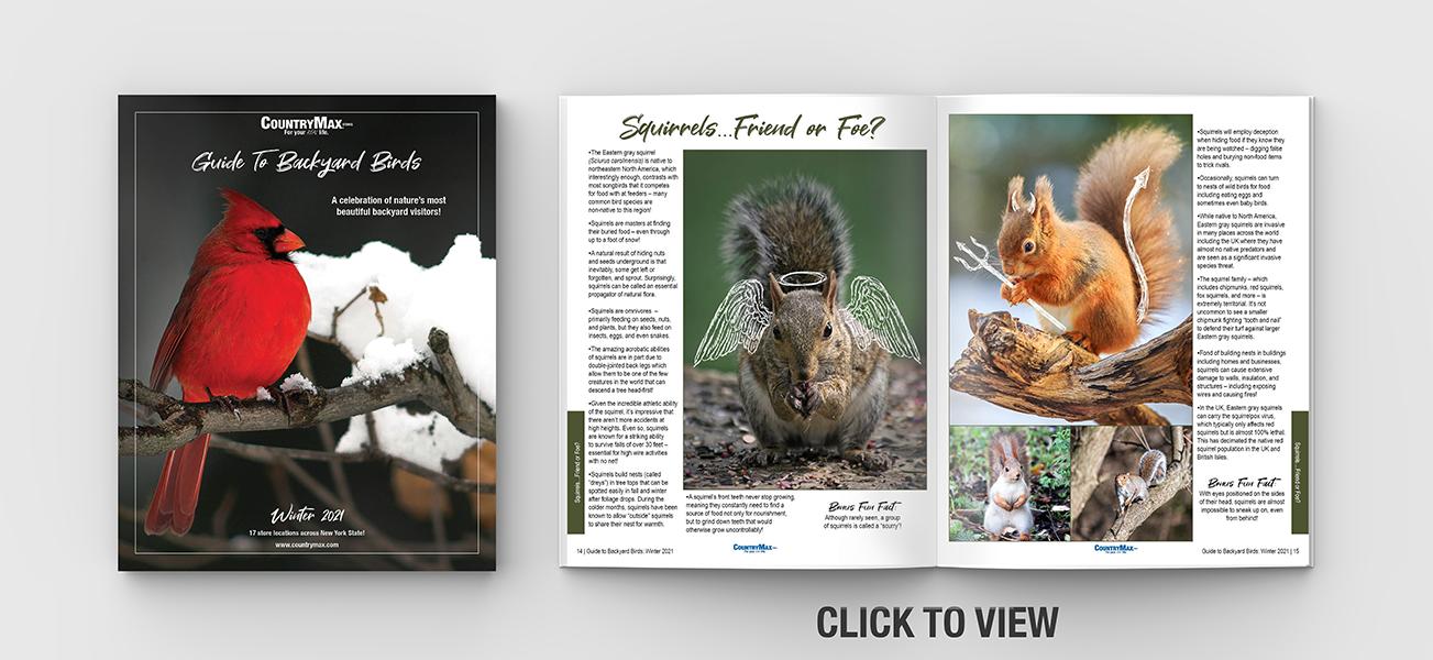 backyard-birds-catalog-landing-page-mockup.png