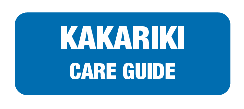 care-guide-links-landing-page-27.png
