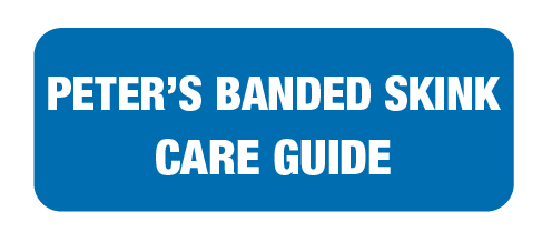 care-guide-links-landing-page-34.png