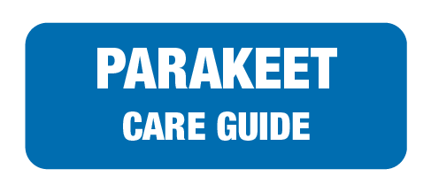 care-guide-links-landing-page-50.png