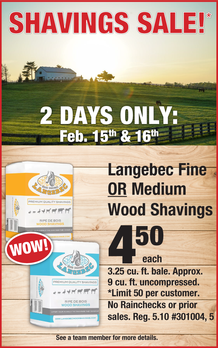 shavings-sale-landing-page.png