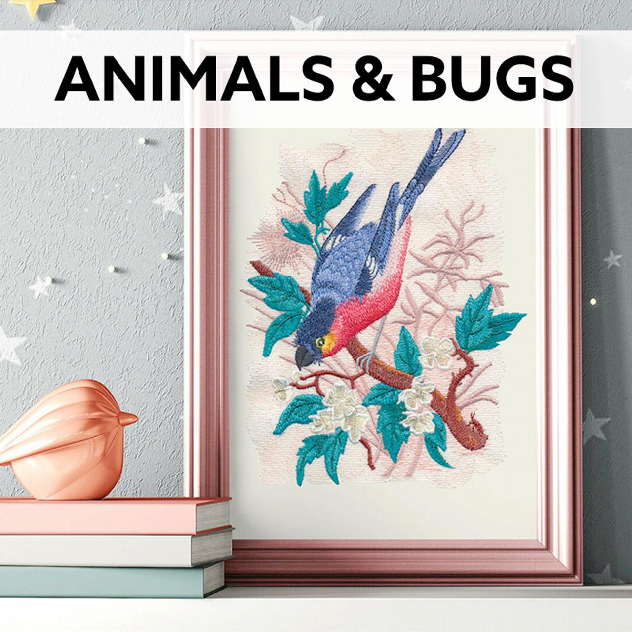 Animals & Bugs