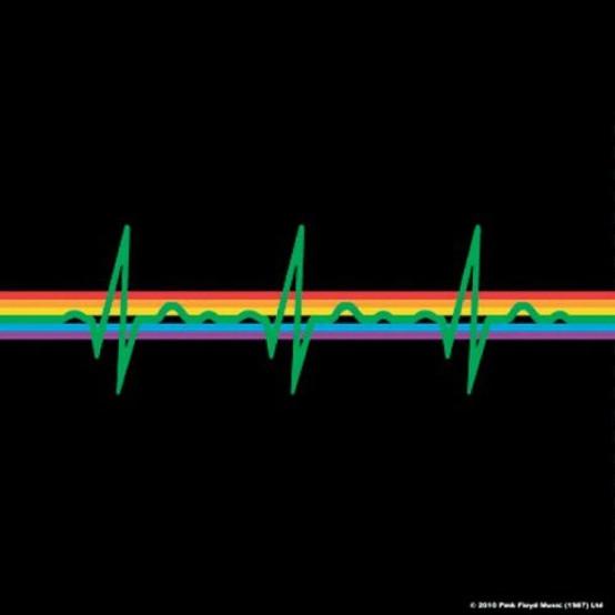 Pink Floyd Dark Side of The Moon Single Cork Coaster  PF-COAST-01-B