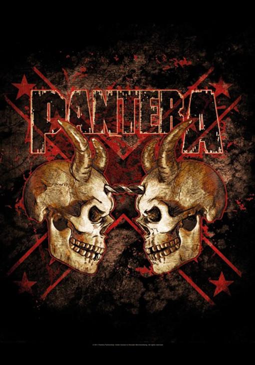 Pantera Double Skull Wall Flag  HFL1092