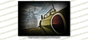 WWII Japanese Zero & Pilot Ghost 8x12 Matte Finish Professional Photograph Doolittle Raiders Gathering of B-25's - Grimes Urbana, Ohio - Texas Legends