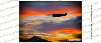 Erickson Aircraft Collection's WWII P-47 Thunderbolt passing in front of the painted sky at the Airshow of the Cascades 2019.