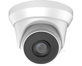 2MP IP Turret Camera