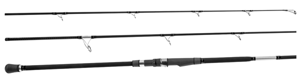Saltwater Surf Spinning Rod from Tsunami