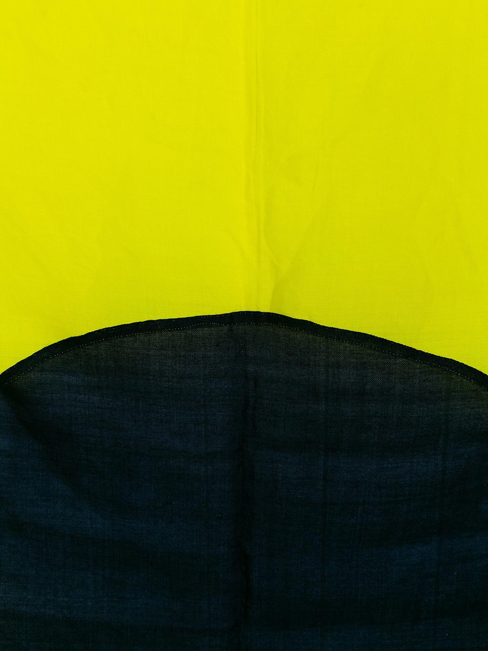 Flag I #5920