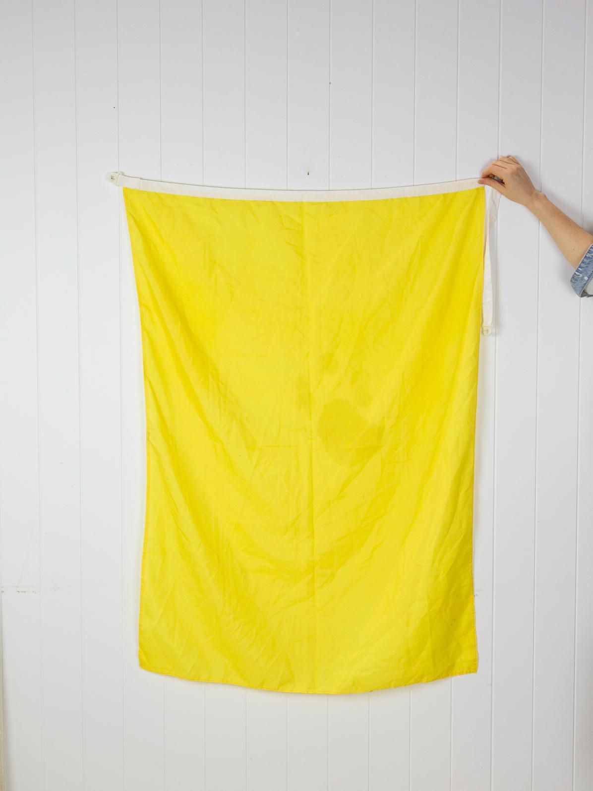 Flag Q #6409