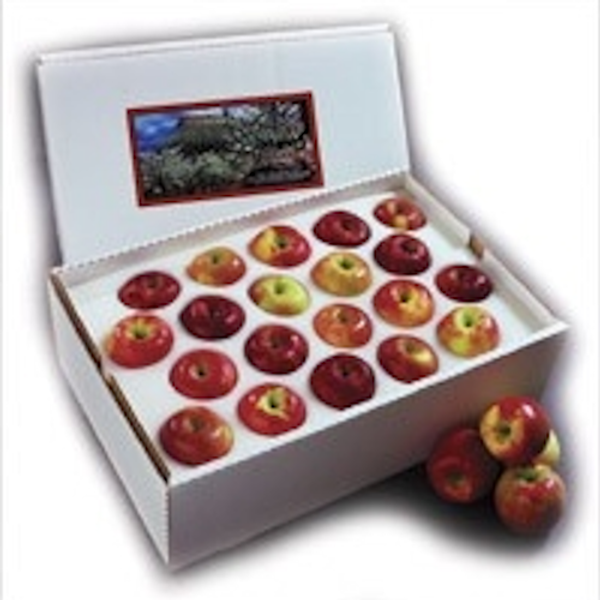 Fresh Palisade Apples | Colorado Apples