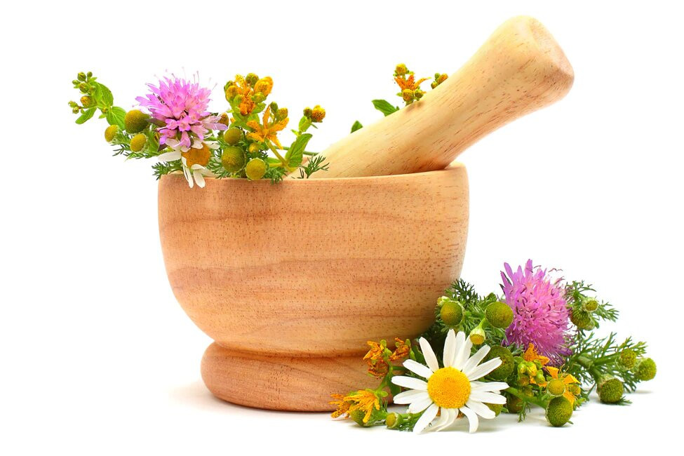 Arnica: The Stand Up and Go(ethe) Home Herb