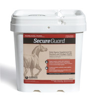 Secure Guard