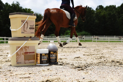 Best Horse Supplements