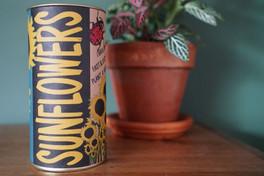 Sunflower | Seed Grow Kit