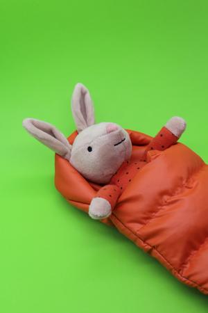 Snuggler Bunny