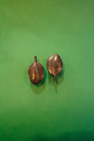 Brass Leaf Cabinet Knobs