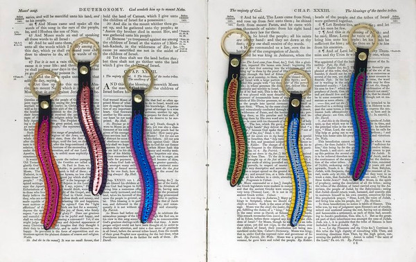 Millipede Key Fob