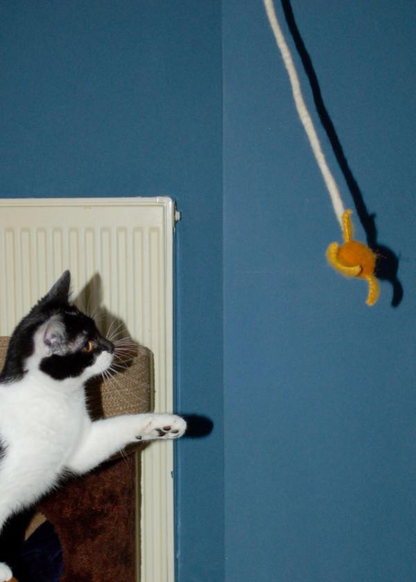 Felt Cat Play Toy