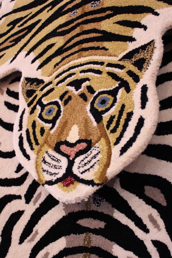 Bengal tiger face detail