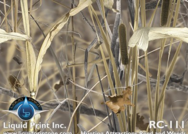 RC-111  Reeds and Weeds