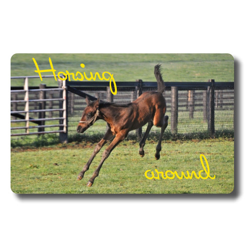 Horsing Around - Credit Card Size various start dates