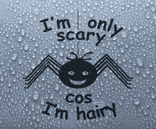 Scary-hairy cute cartoon spider 'Only scary cos I'm hairy' - vinyl decal sticker