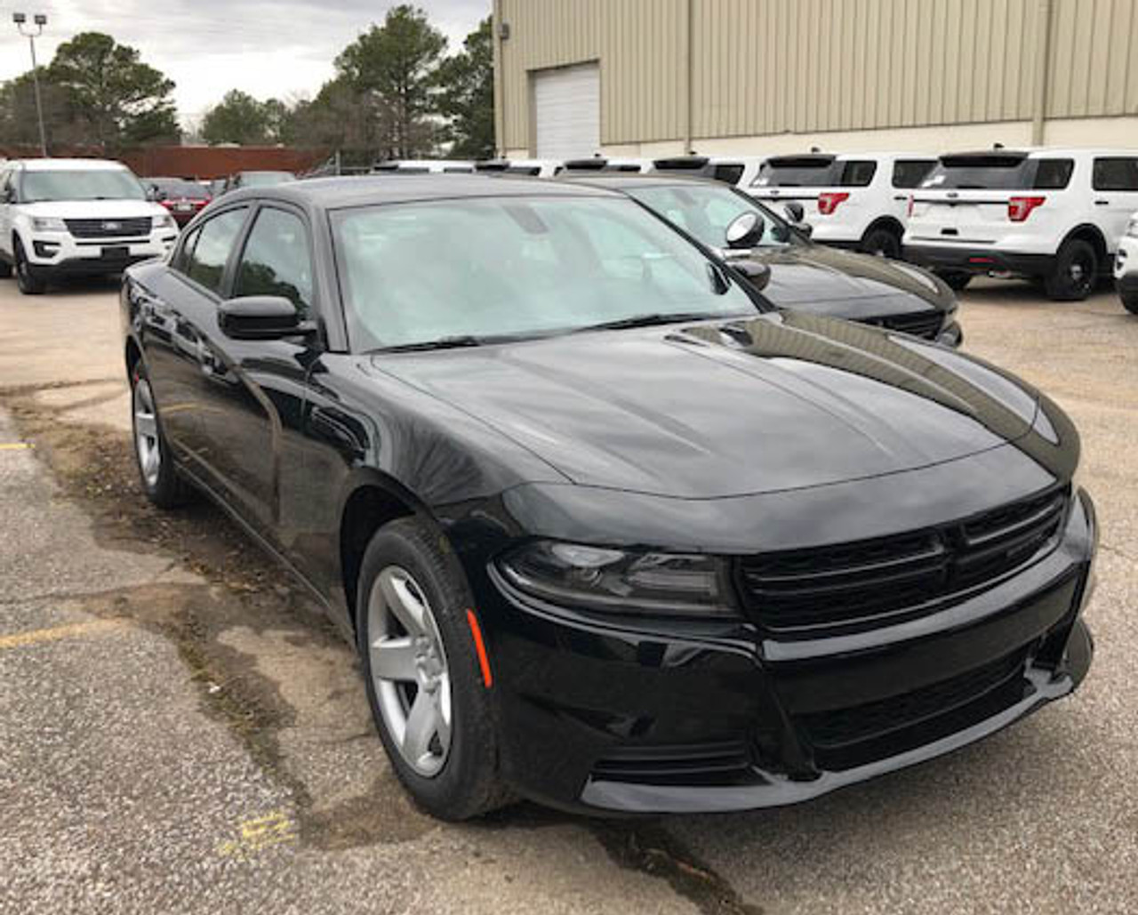 New 2019 Black Dodge Charger V6 2WD ready to be built as a Marked Patrol Package Police Pursuit Car,  choose any color LED Lights, + Delivery