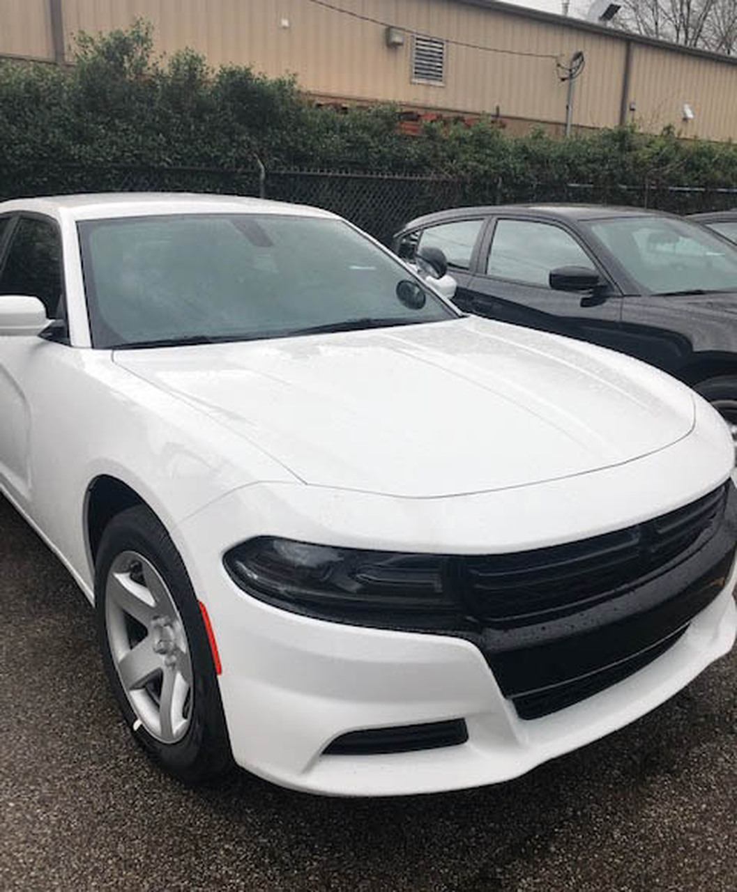 New 2019 White Dodge Charger V6 2WD, ready to be built as a Slick-Top Patrol Package Police Pursuit Car,  choose any color LED Lights, + Delivery