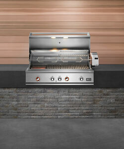 DCS Series 9 Evolution 48-Inch Built-In Natural Gas Grill With Rotisserie - BE1-48RC-N