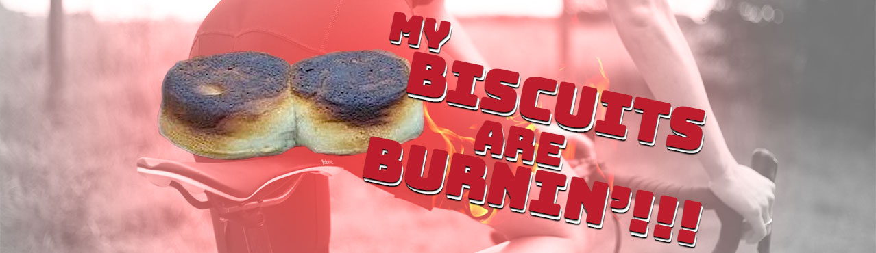 biscuits-are-burning-web-banner.jpg