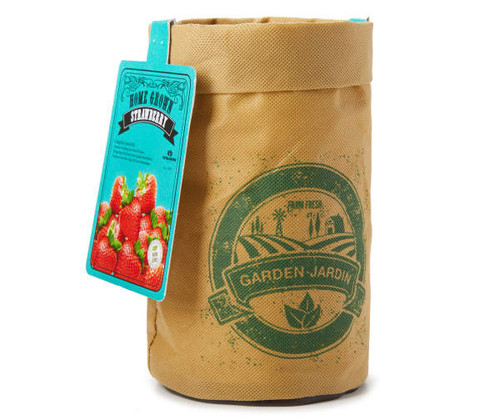 Vintage Grow Kit Bags Mix n Match (460275)