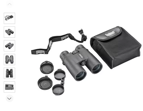 Bushnell 10x42 Roof Prism All-Purpose Binocular (21014SC)