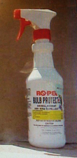 Ropel Bulb Protect 16 oz (1/23)