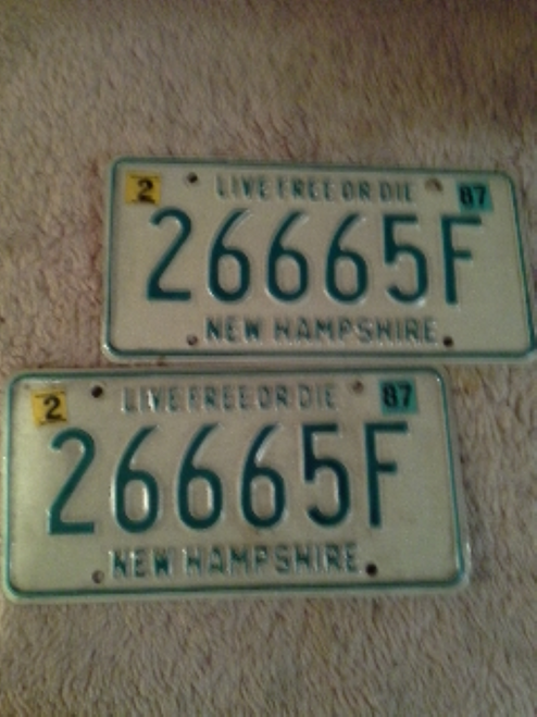 Collectible Vintage Auto Number Plates pair ( 266 65F