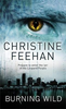 Feehan, Christine / Burning Wild : Number 3 in series